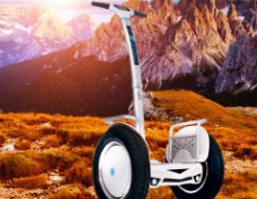 The Airwheel S5 scooter is combined mainly with two silicon driving handles, an operating pole, an anti-mud board, two wheels, a motor and a body holder and so on.