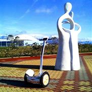 Airwheel S3T airwheel smart airboard Airwheel S3T